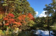 裏磐梯の紅葉(4)
